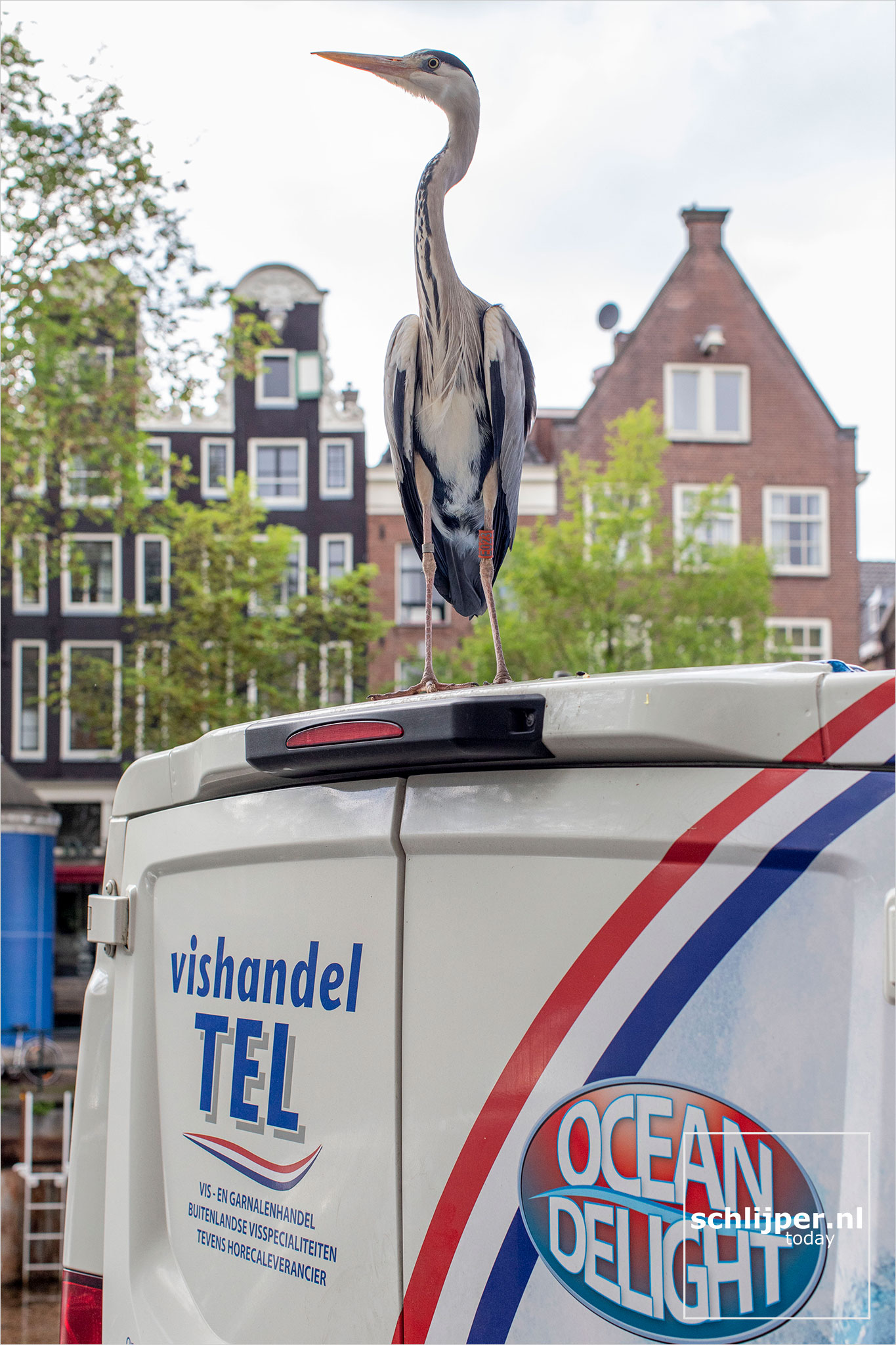 The Netherlands, Amsterdam, 19 mei 2021