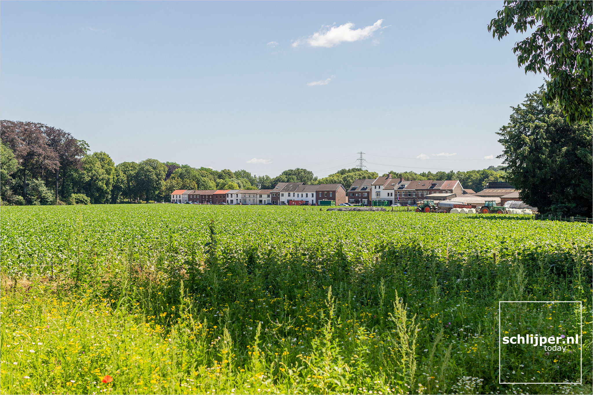 The Netherlands, Rothem, 19 juli 2021