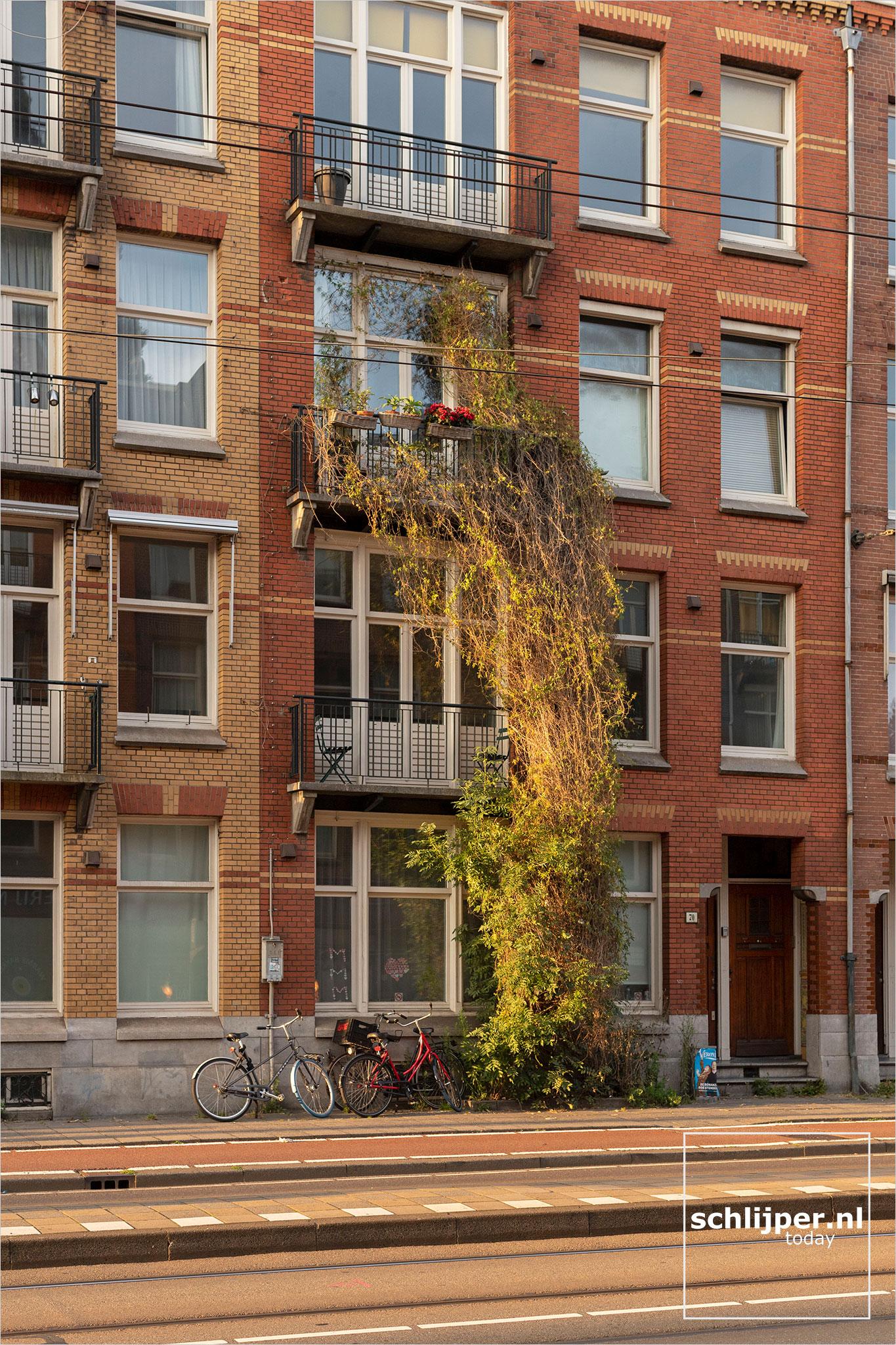 The Netherlands, Amsterdam, 3 augustus 2021