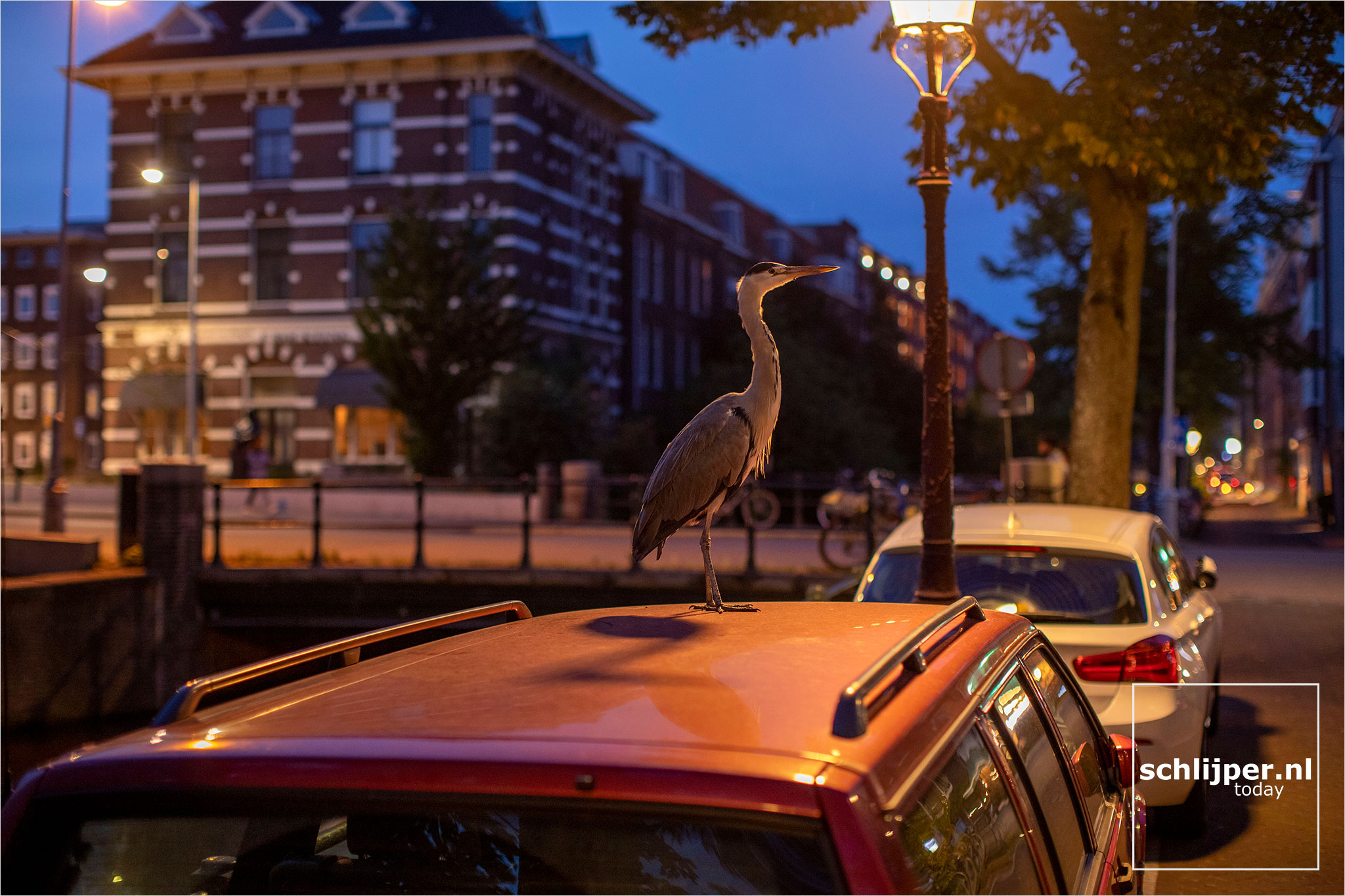 The Netherlands, Amsterdam, 19 september 2021