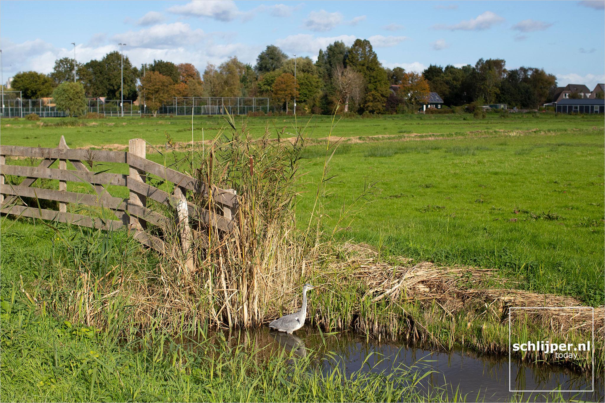 The Netherlands, Amstelveen, 12 oktober 2021